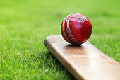 Close-up of red cricket ball and bat sitting on grass