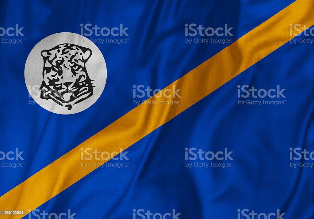Closeup of Ruffled Bophuthatswana Flag, Bophuthatswana Flag Blowing in Wind stock photo