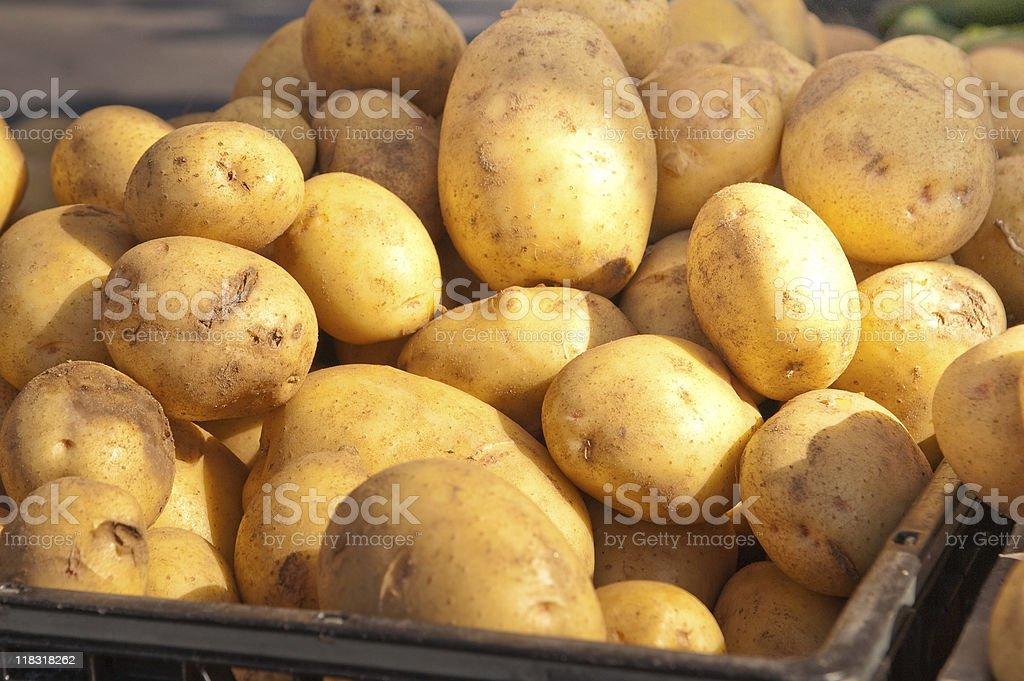 Closeup of russet potatoes. stock photo