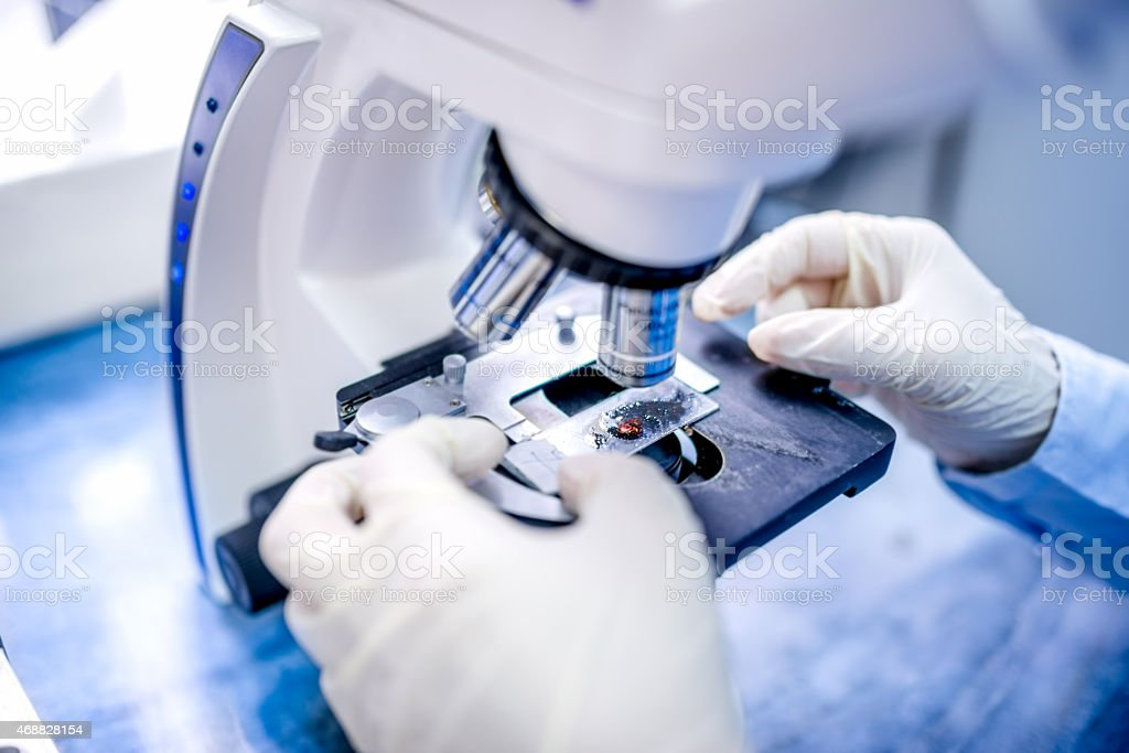 close-up of scientist hands with microscope, examining samples and liquid stock photo