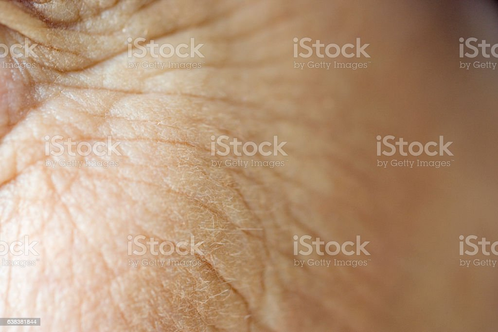 Close-up of senior woman's face skin wrinkles stock photo