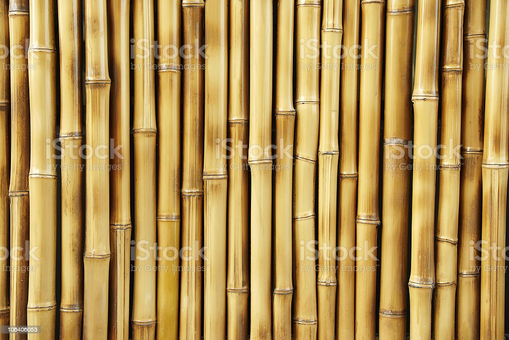 Close-up of several bamboo sticks in a row stock photo