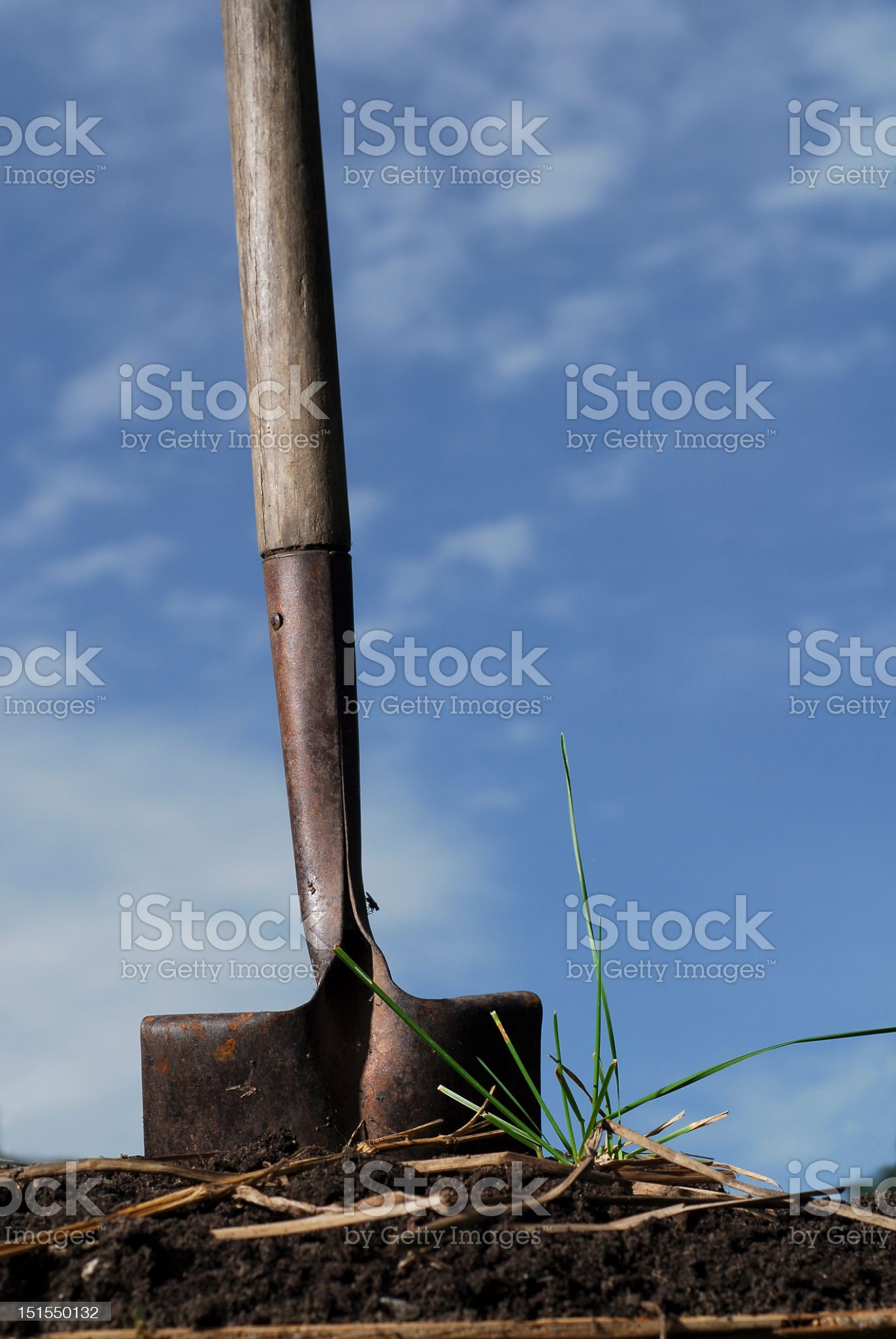 Close-up of Shovel standing in soil with sky background royalty-free stock photo