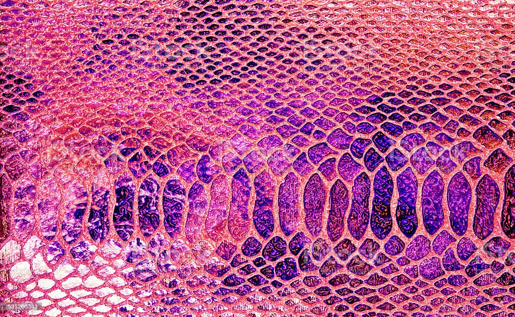 Close-up of snakeskin leather, can use as background stock photo