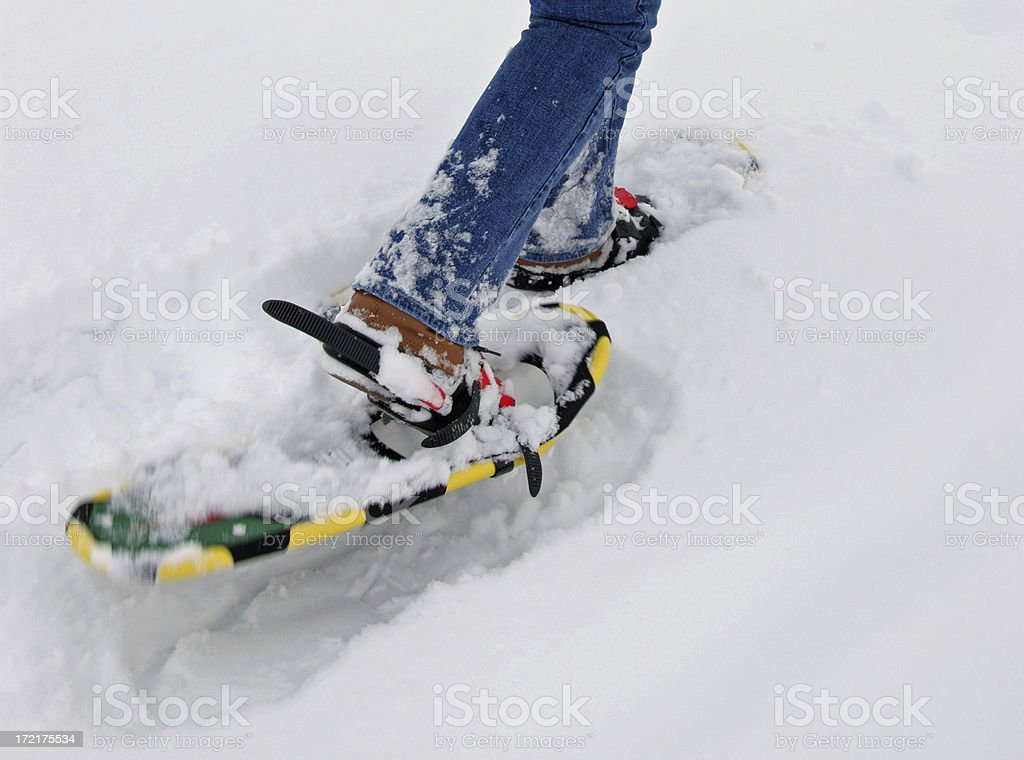 Closeup of Snowshoes royalty-free stock photo