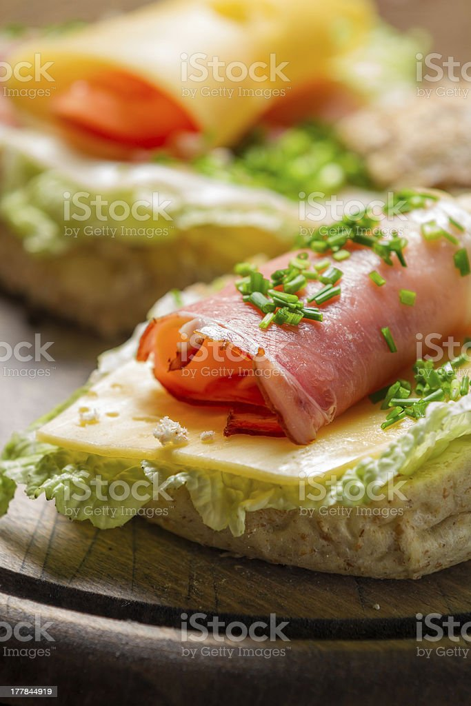 Closeup of spring Fresh sandwich with ham and cheese royalty-free stock photo