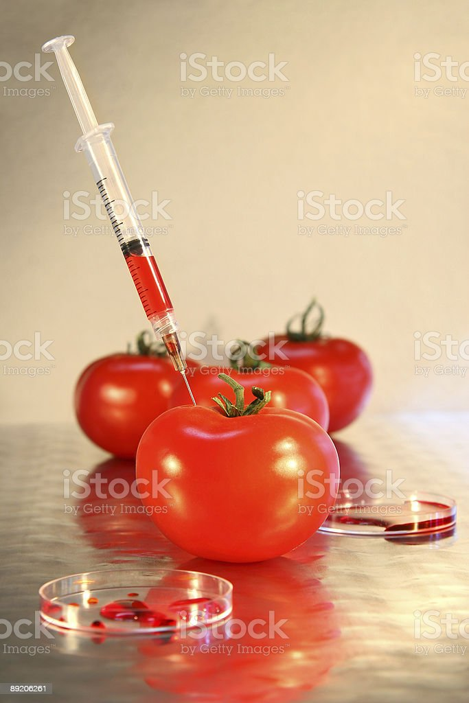 Close-up of syringe in tomato royalty-free stock photo