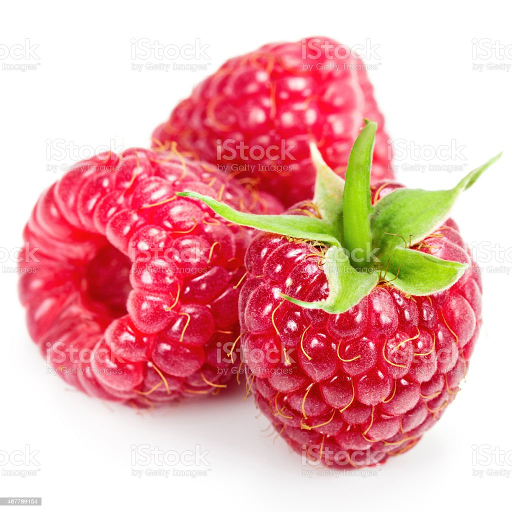 Closeup of three fresh raspberries stock photo