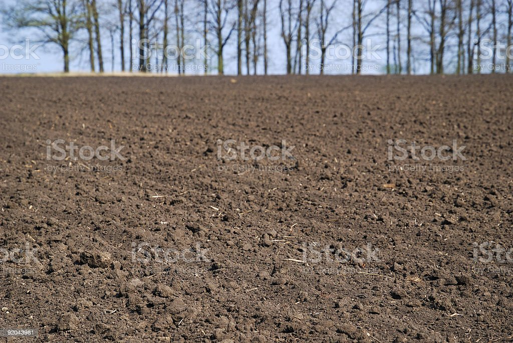 Close-up of tillage stock photo