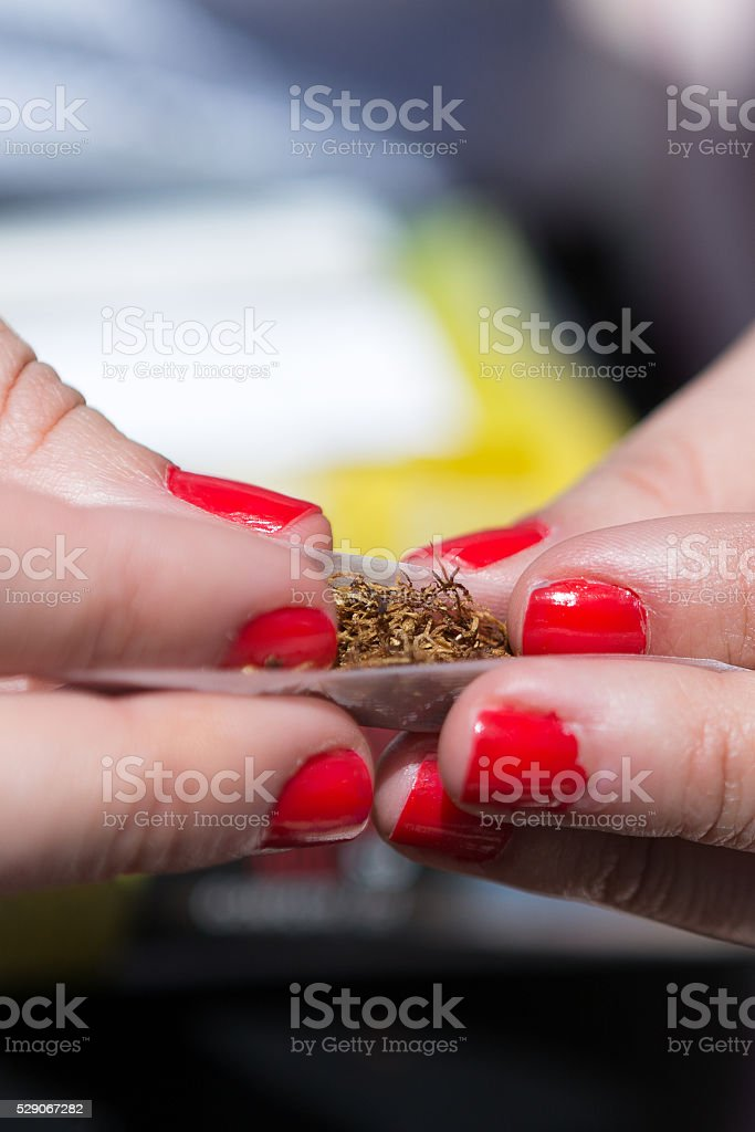 Close-up of tobacco in rolling paper stock photo
