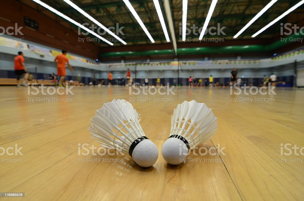Close-up of two badminton shuttlecocks on wooden floor stock photo