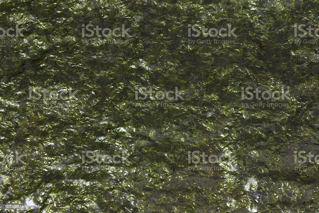 A closeup of unrolled nori seaweed royalty-free stock photo