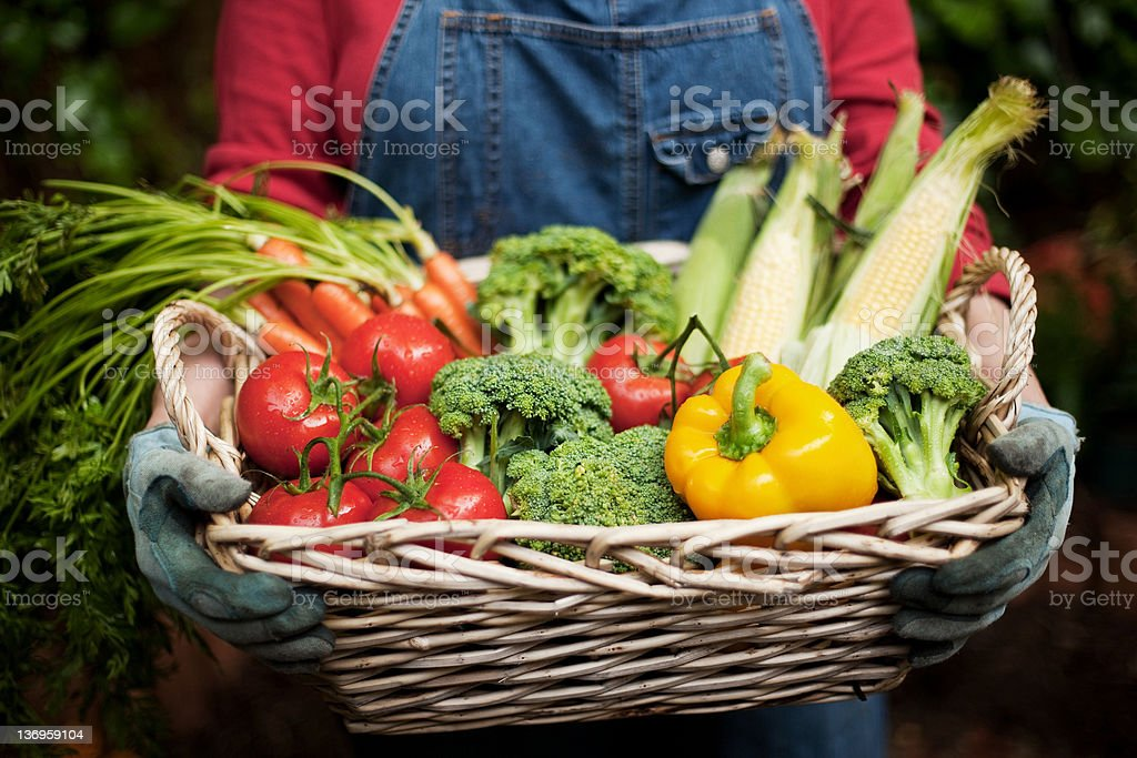 Closeup of Vegetables in Basket stock photo