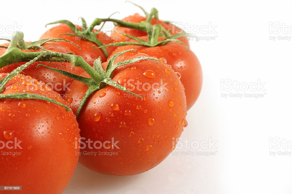 Close-up of vine tomatoes stock photo