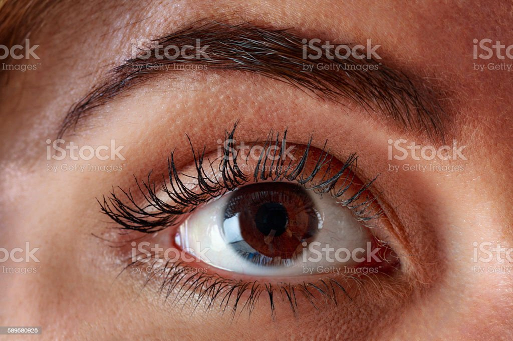 Close-up of young woman brown eyes stock photo