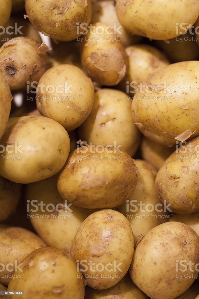 close-up on new potatoes stock photo