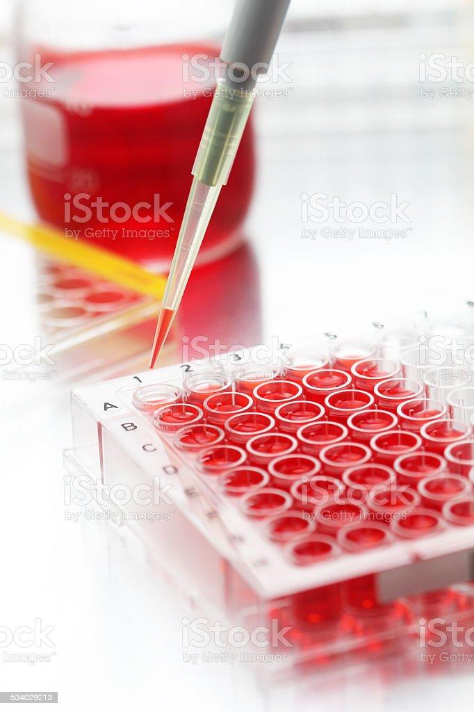 Closeup on sample biomedical research stock photo