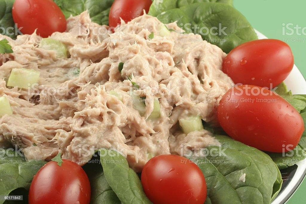 Close-up on spinach topped tuna salad royalty-free stock photo
