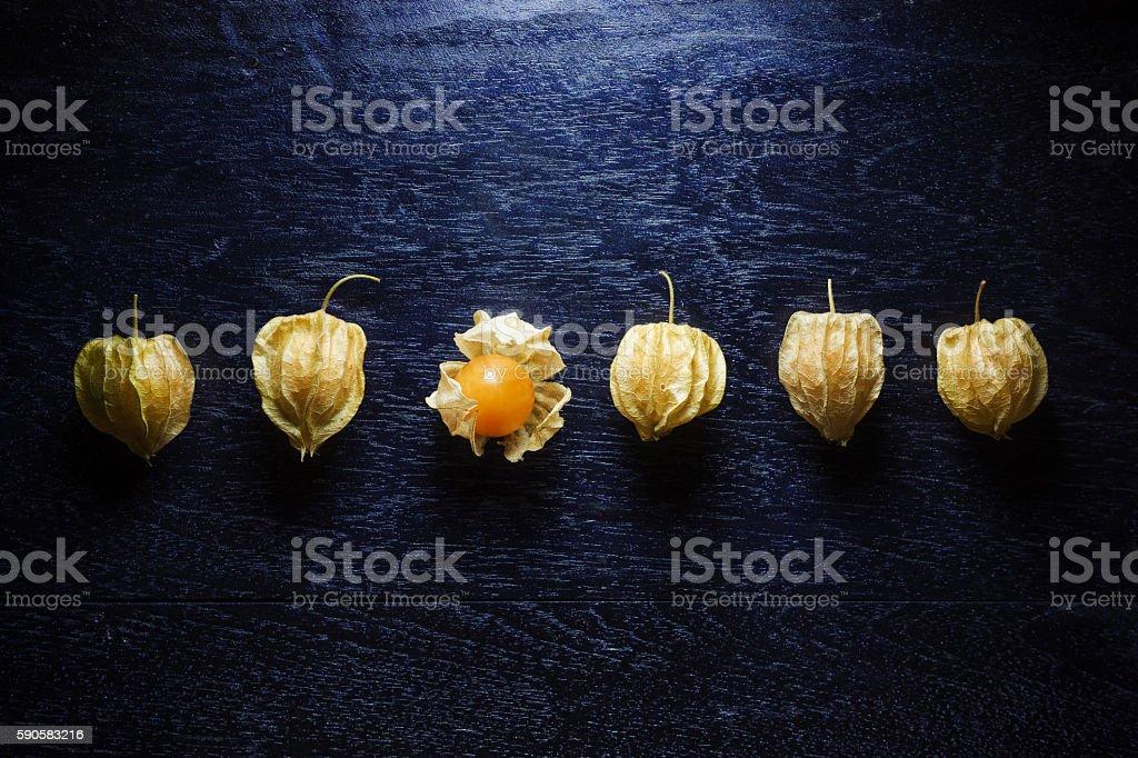 Closeup orange organic cape gooseberries on wooden background stock photo