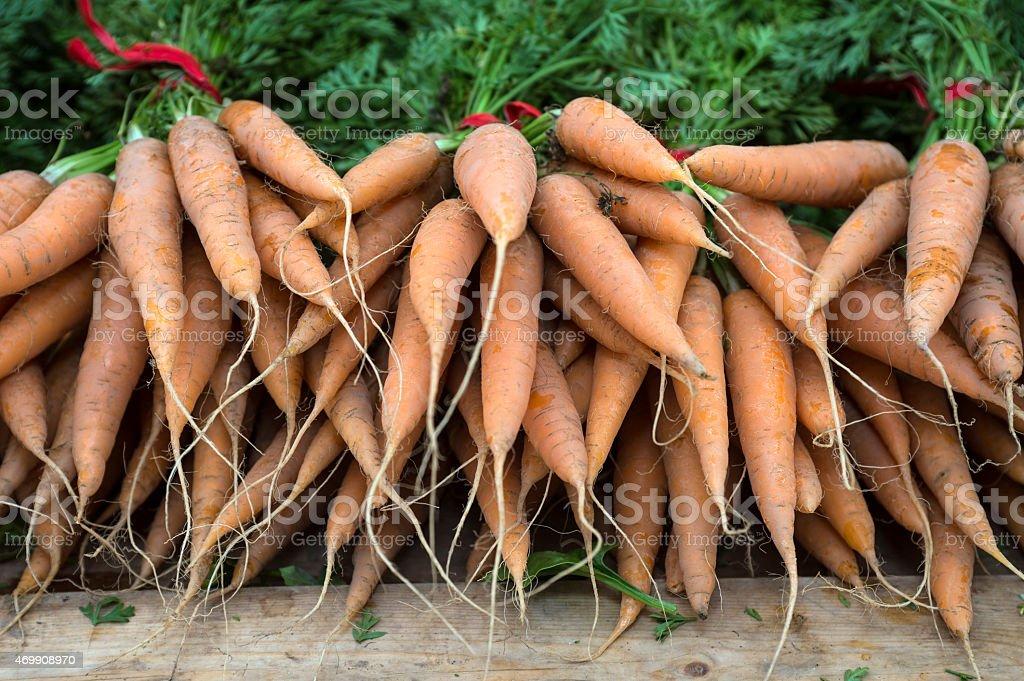 Close-up Organic Carrots at Farmer's Market stock photo