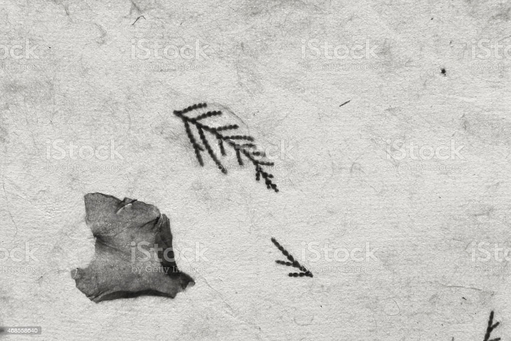 Closeup paper texture black and white royalty-free stock photo