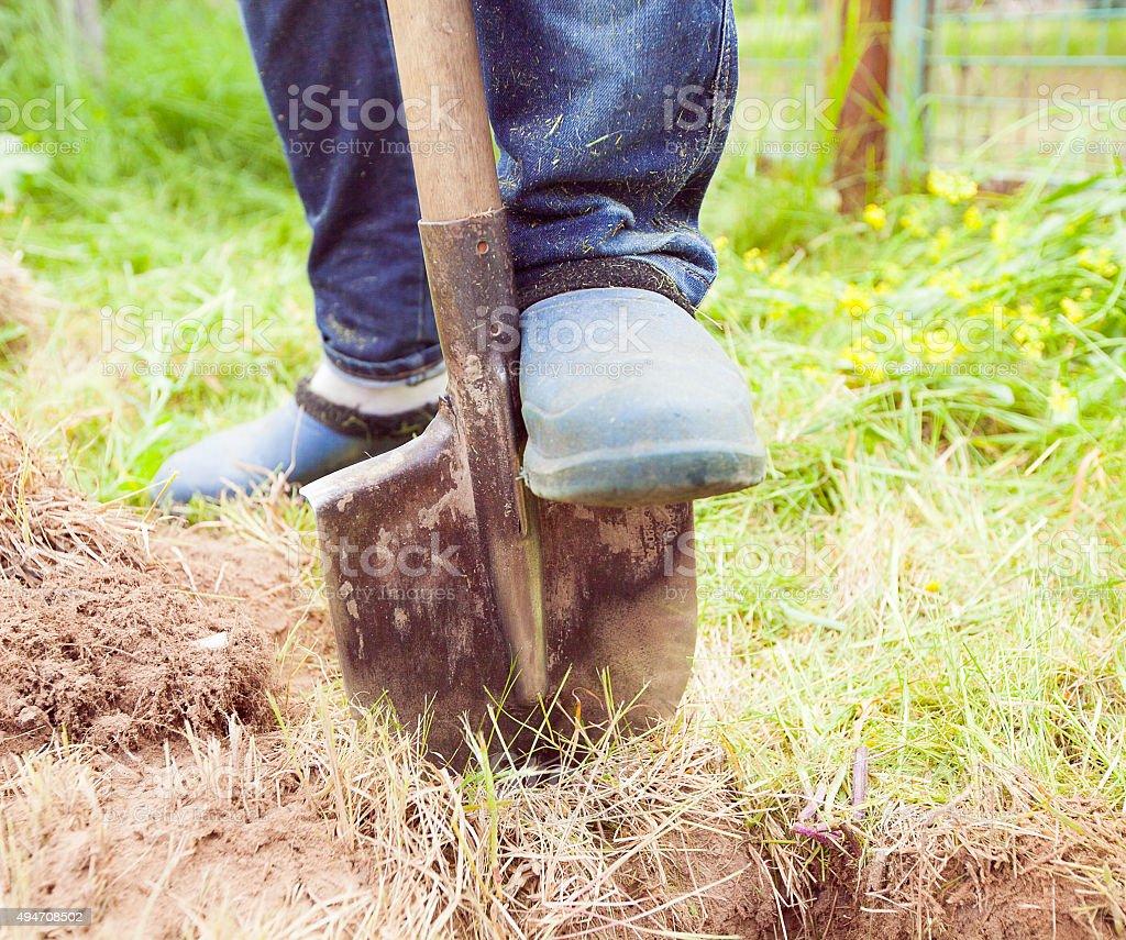 Closeup photo of man digging soil at garden stock photo