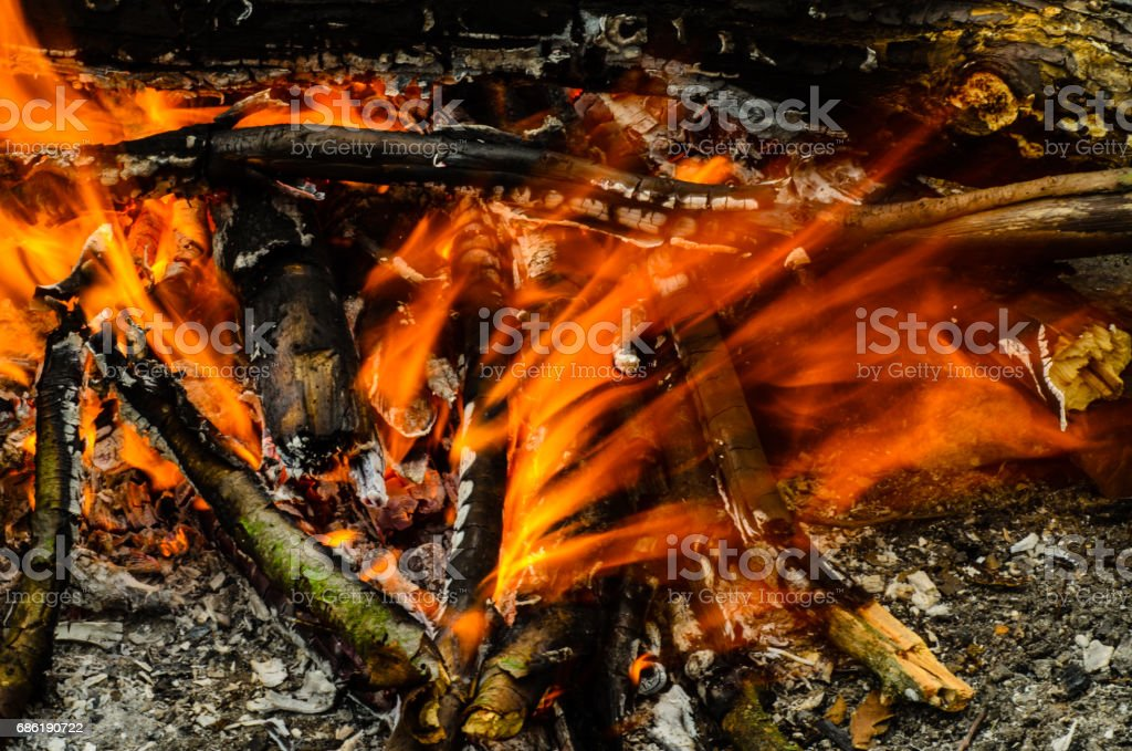 Close-up photo of the camp fire stock photo