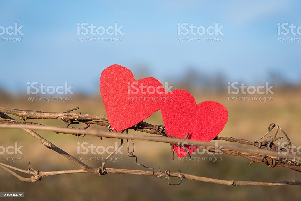 Closeup photo of two heart shape stock photo