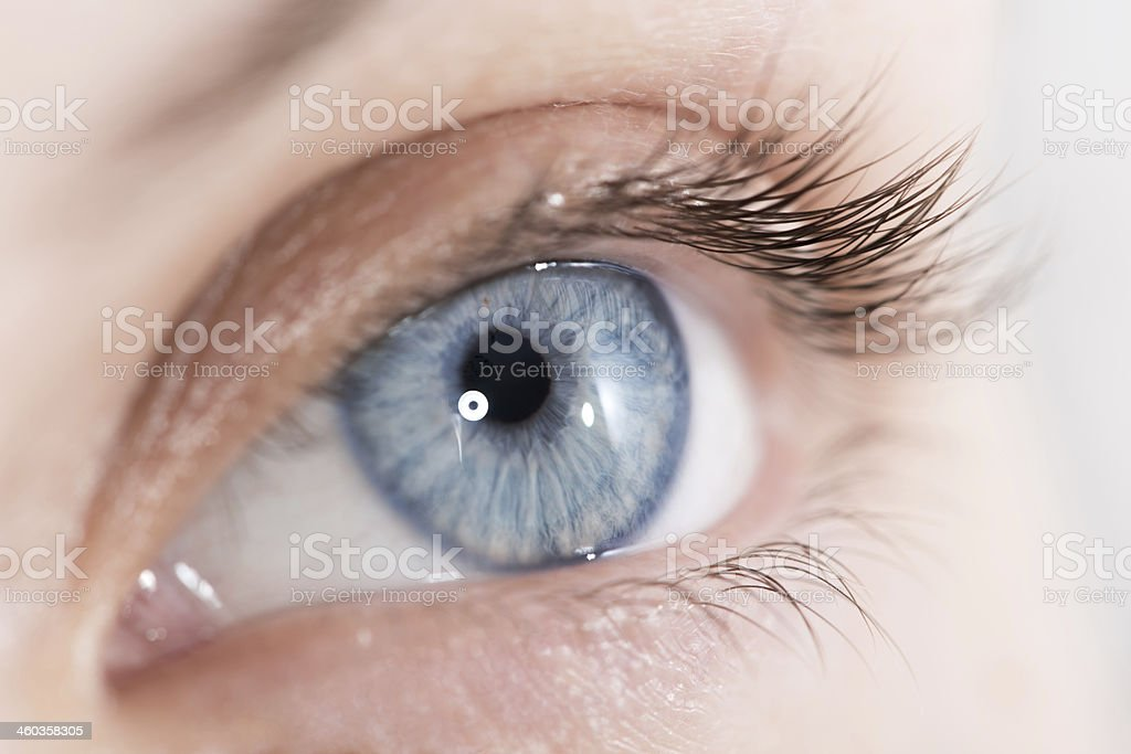 Closeup shot of beautiful woman eye stock photo