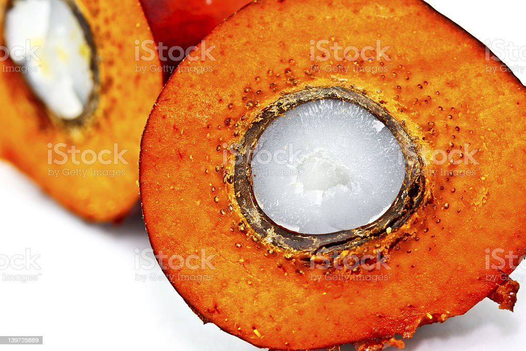 closeup shot of cut oil palm fruit stock photo