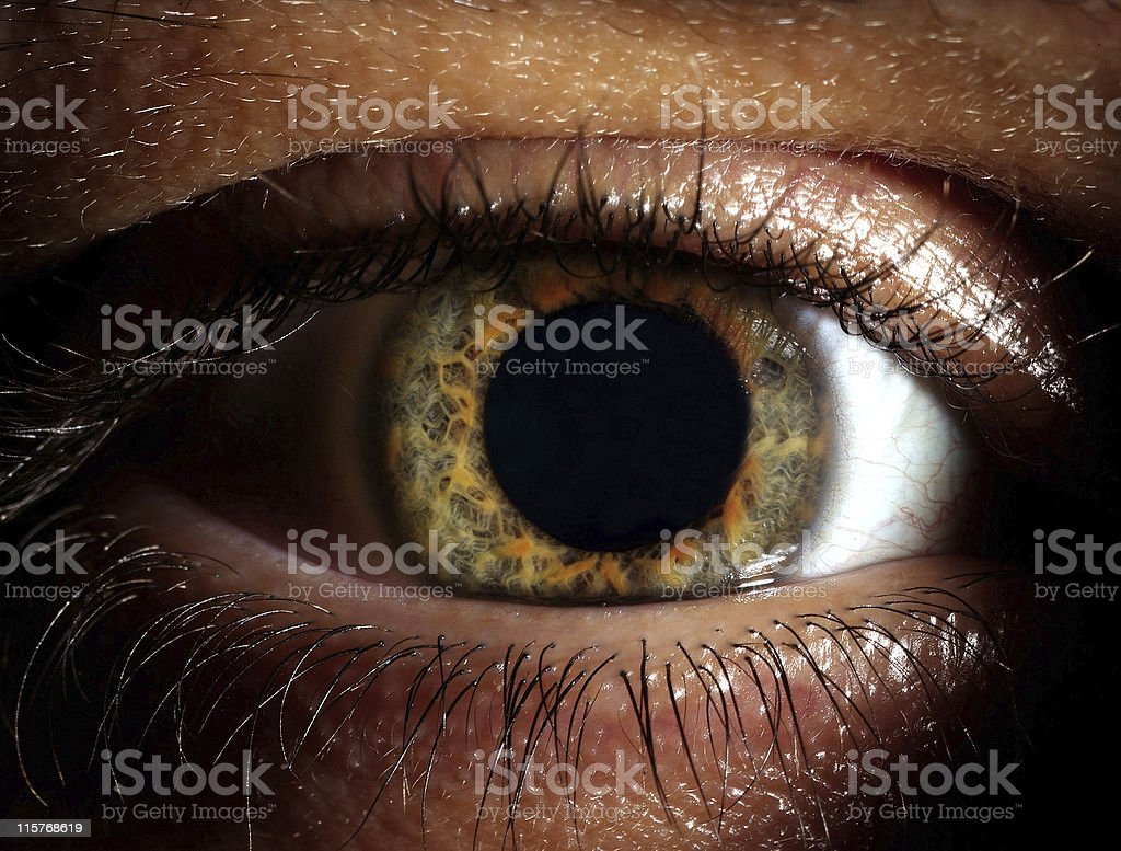 Closeup shot of the man eye stock photo