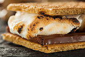 Close-up side view of a gooey s'more