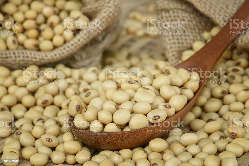 Closeup Soy bean on wooden spoon stock photo
