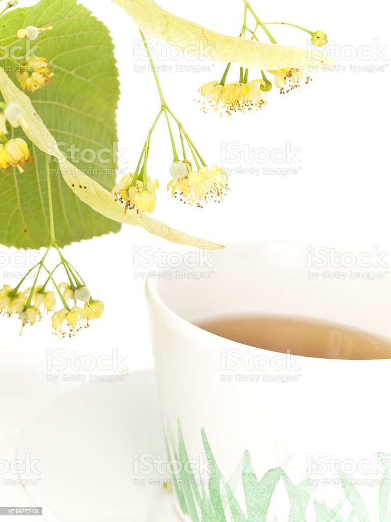 closeup studio shot of linden and lime blossoms around a cup royalty-free stock photo
