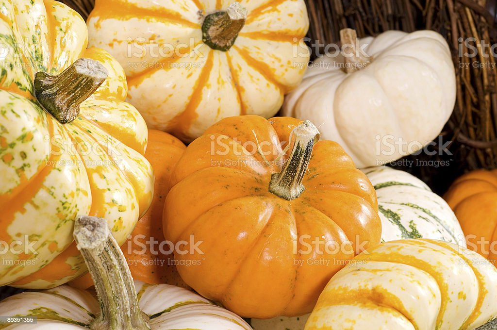 A Close-up view of a season gourds in horizontal view stock photo