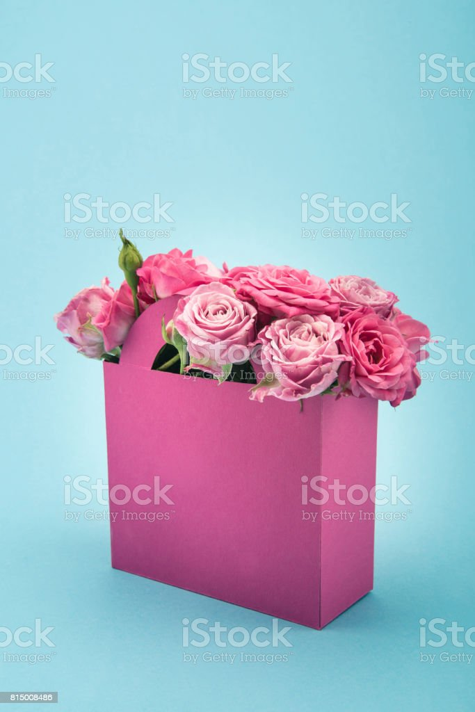 Close-up view of beautiful blooming pink roses in decorative paper bag arranged isolated on blue stock photo