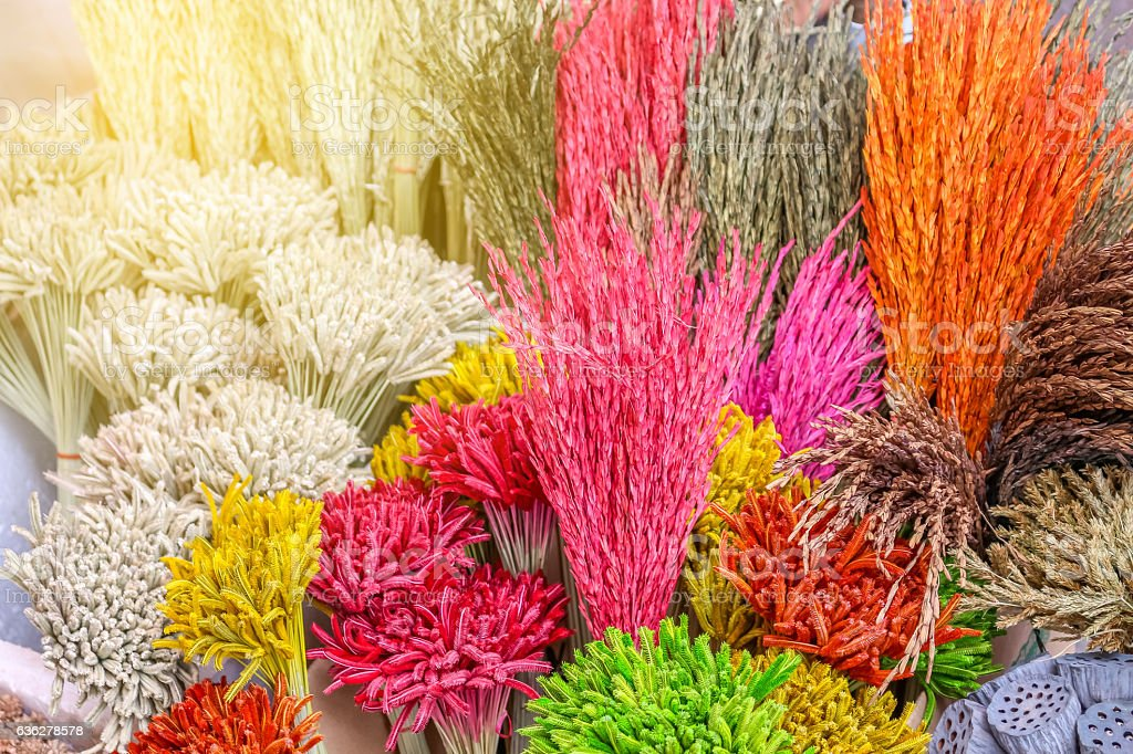 Closeup view of colorful grass flower background stock photo