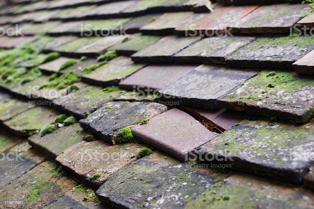 Closeup view of cracked roof tiles with moss royalty-free stock photo