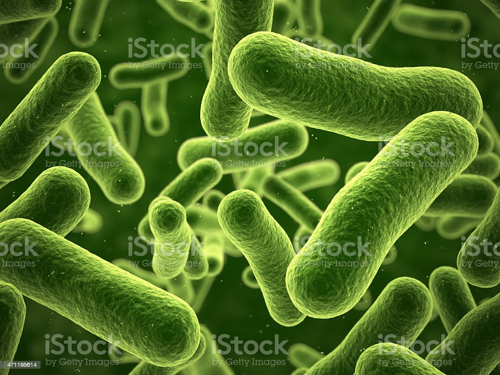 Close-up view of green bacteria stock photo