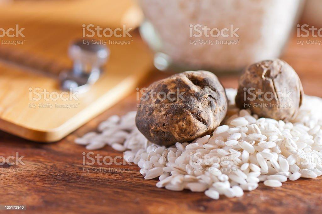 Closeup view of white truffles stock photo