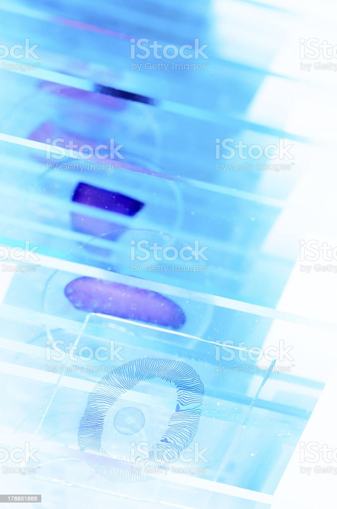 Close-ups of scientific microscope slides stock photo