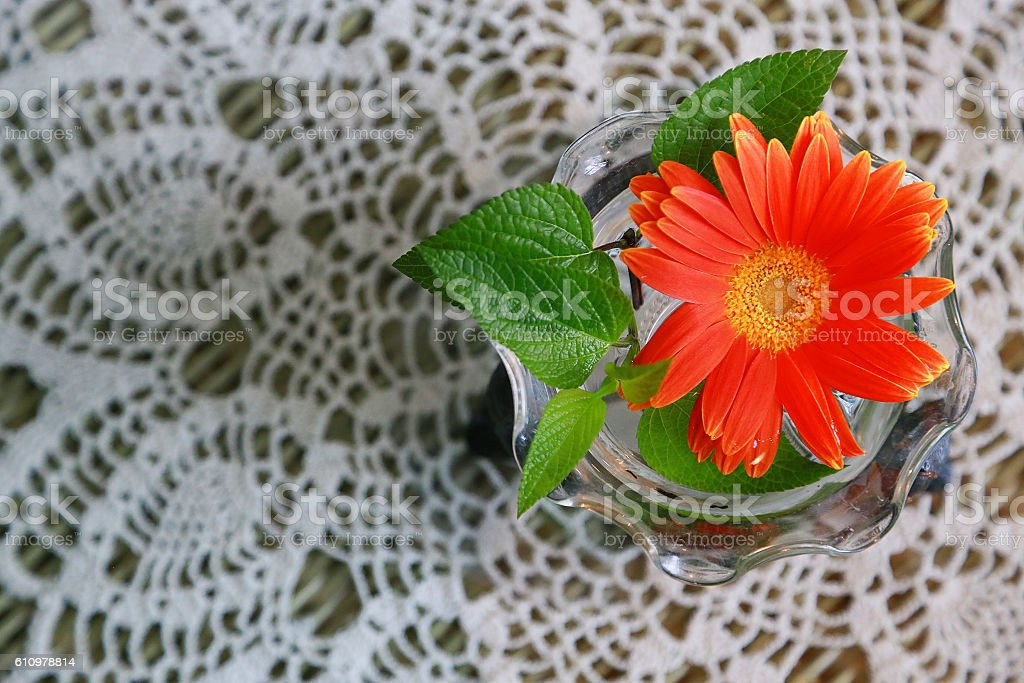 Cloth for lace and orange flower foto de stock libre de derechos