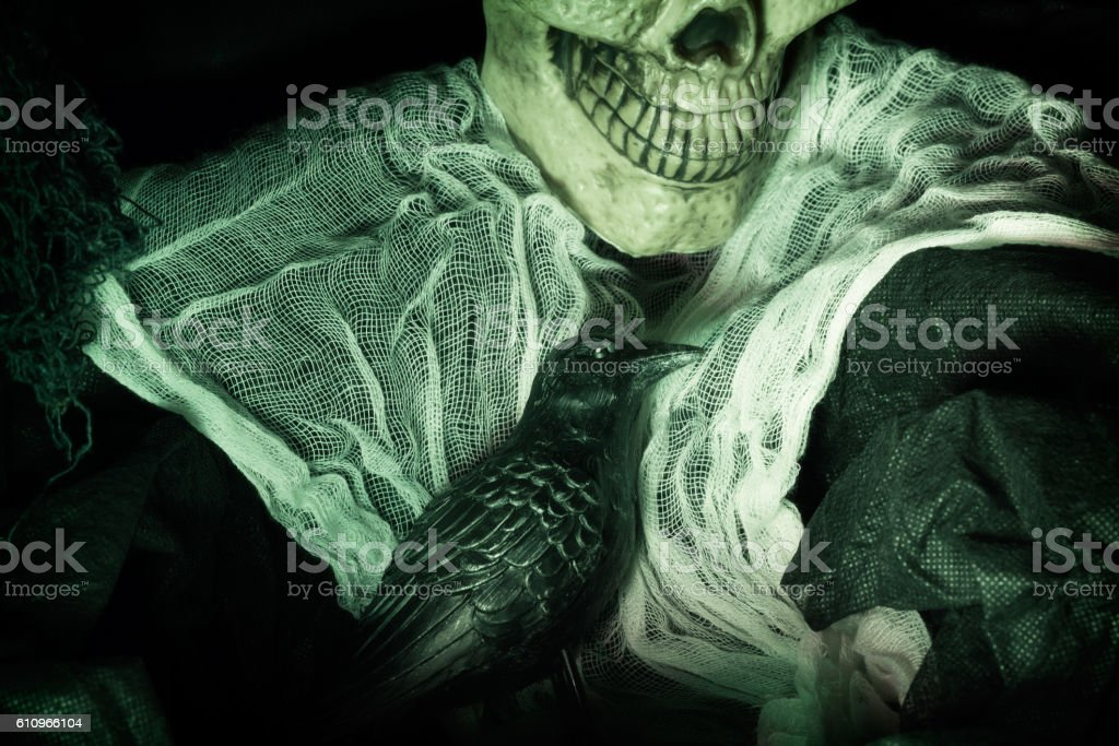 Clothed Skeleton with Evil Pet Crow stock photo
