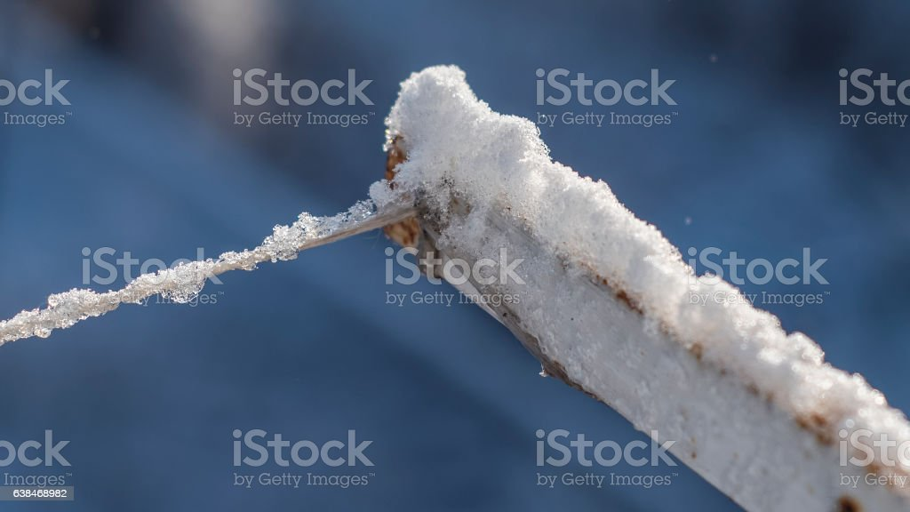 Clothesline covered with ice and snow stock photo