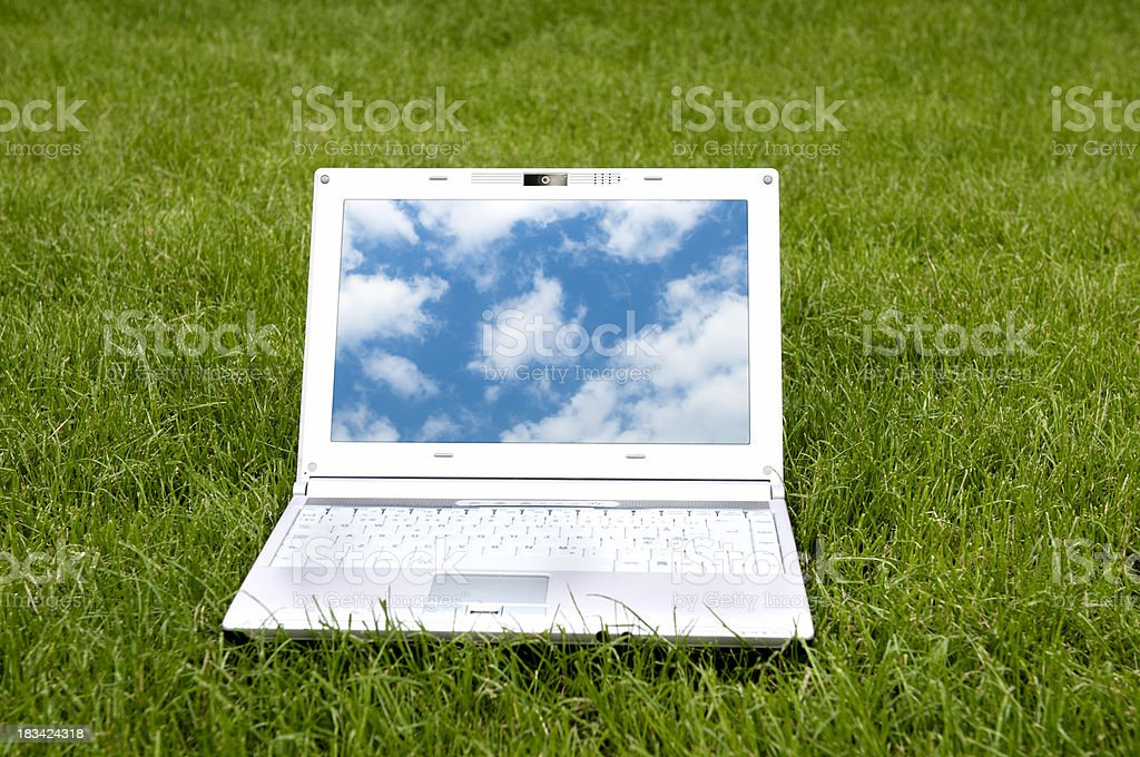 Cloud computing on laptop in the grass stock photo