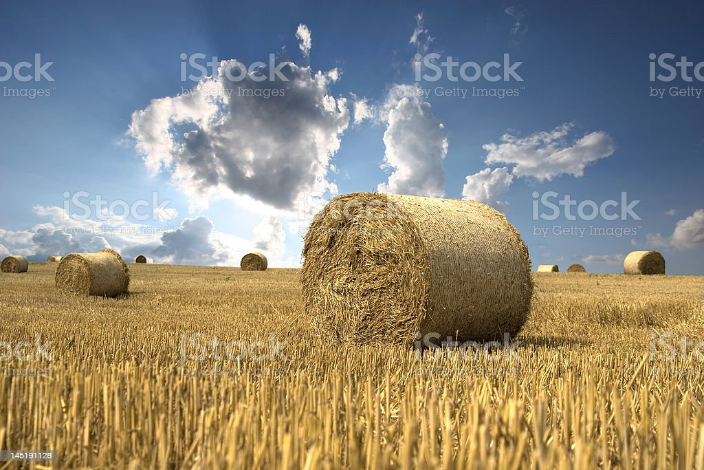 Cloud flash over field royalty-free stock photo