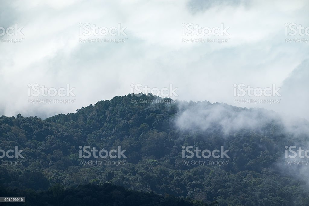 Cloud fog motion through mountain stock photo