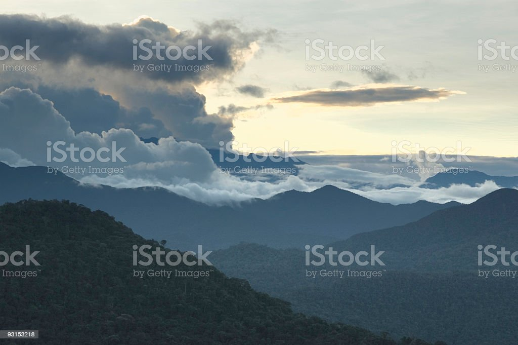 Cloud forest royalty-free stock photo