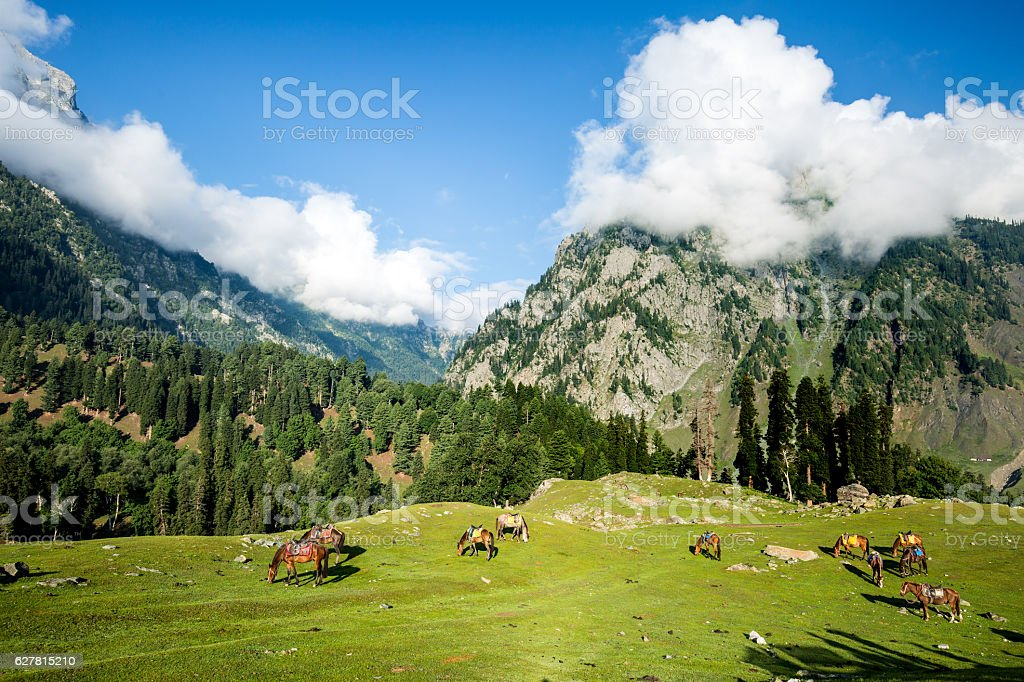 Cloud on the top of mountain stock photo