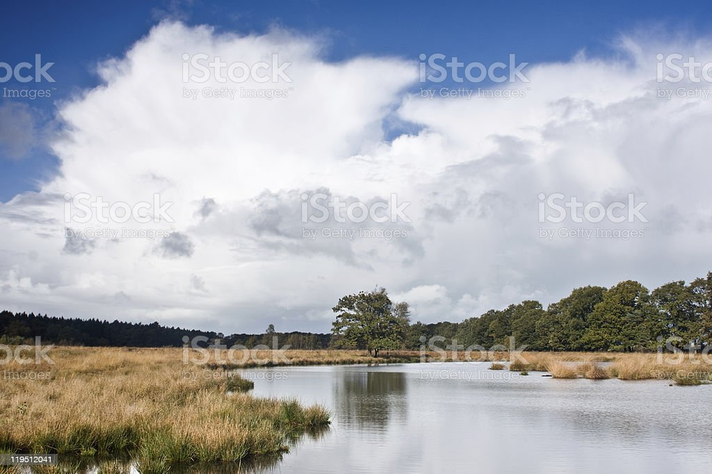 Clouds above a moor stock photo